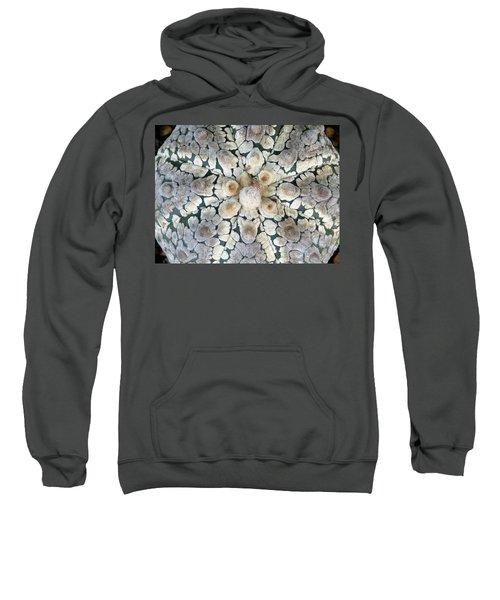 Cactus 2 Sweatshirt