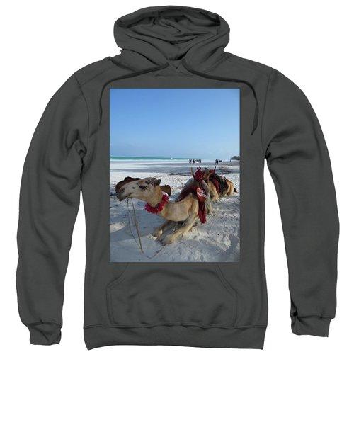 Camel On Beach Kenya Wedding Sweatshirt