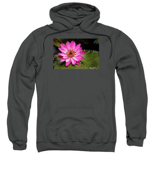 Carroll Creek Water Lily Sweatshirt