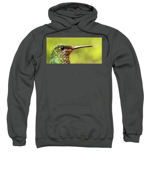 Close-up Of A Rufous-tailed Hummingbird Sweatshirt