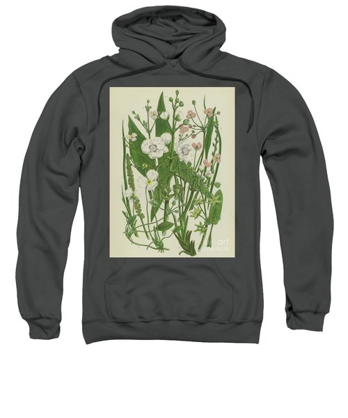 Common Star Fruit, Greater Water Plantain And Other Plants Sweatshirt