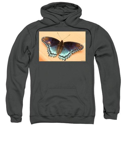 Delicate Beauty Sweatshirt
