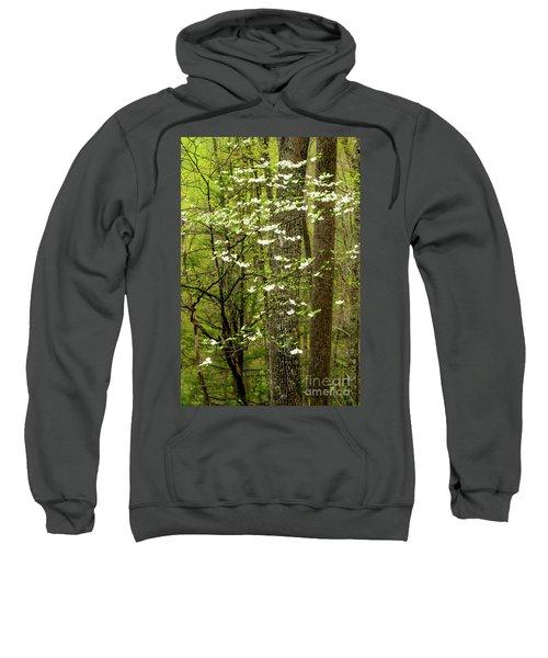 Dogwood Blooming In Forest Sweatshirt