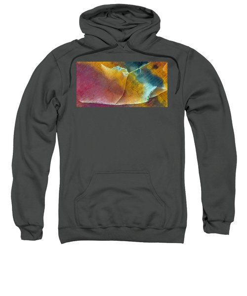 Earth Portrait 001 Sweatshirt