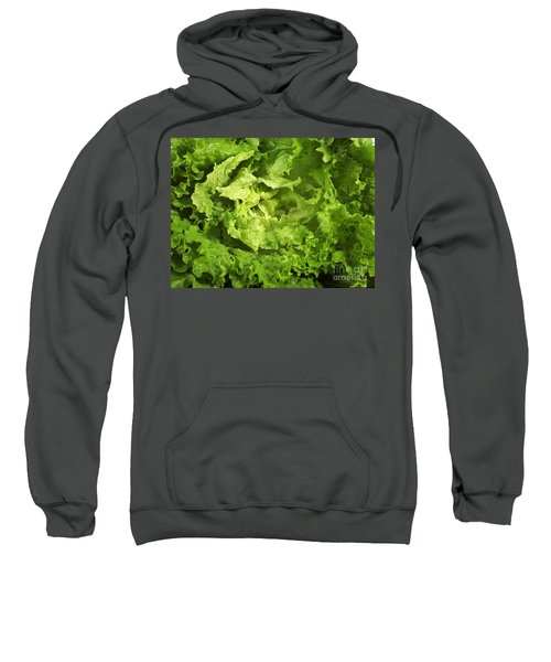 Escarole Leaves Cichorium Endivia Sweatshirt