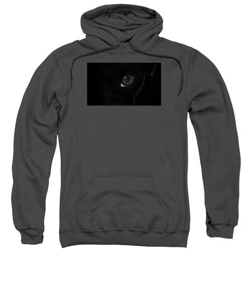 Eye Spy Sweatshirt