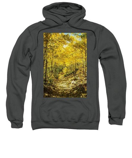 Golden Aspens In Colorado Mountains Sweatshirt