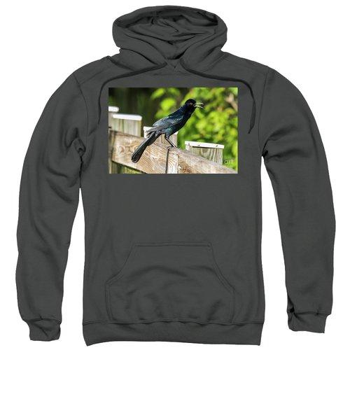 Grackle Sweatshirt