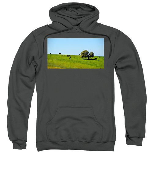 Grazing In The Grass Sweatshirt