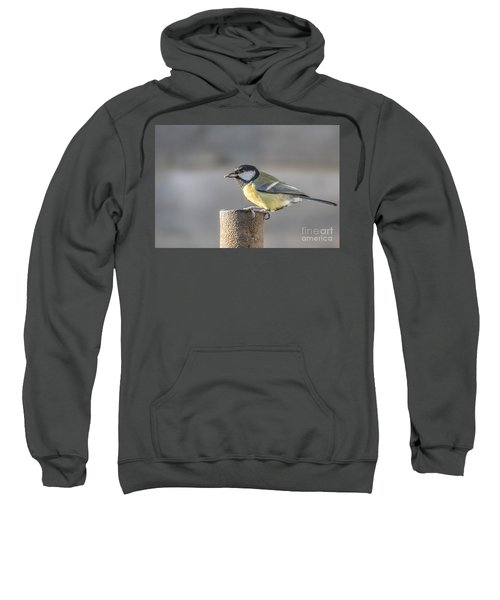 Great Tit On The Tube Sweatshirt