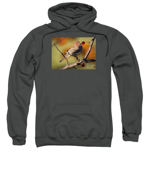 Sweatshirt featuring the photograph House Finch by Ricky L Jones