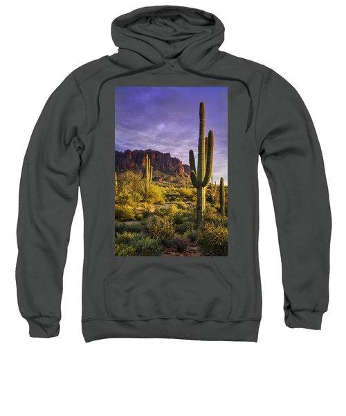 In The Desert Golden Hour  Sweatshirt