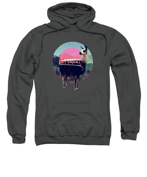 Llama Sweatshirt by Ali Gulec
