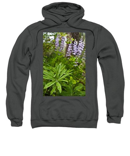 Lupine Leaf Sweatshirt
