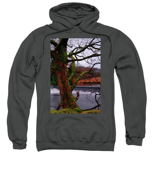 Mossy Tree Leaning Over The Smooth River Wharfe Sweatshirt