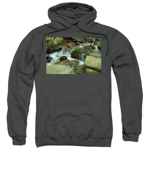 Nature's Beauty Sweatshirt