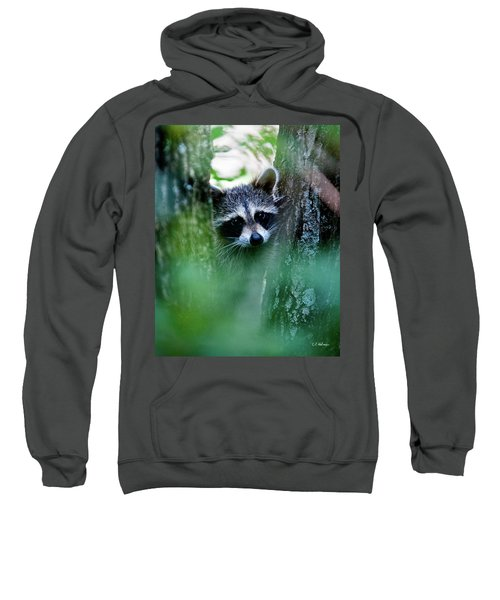 On Watch Sweatshirt