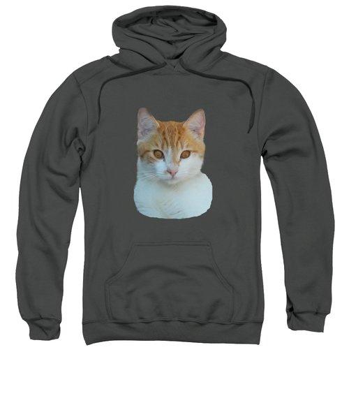 Orange And White Cat Sweatshirt