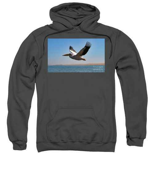 Pelican Sweatshirt