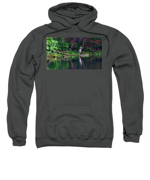 Posing Great Blue Heron  Sweatshirt