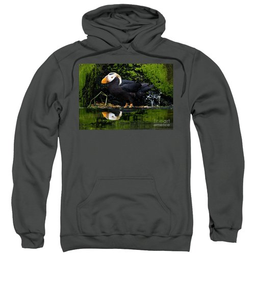 Puffin Reflected Sweatshirt