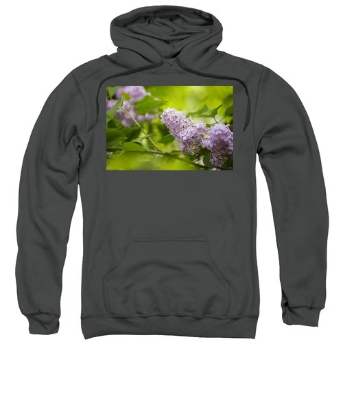 Purple Lilac Sweatshirt