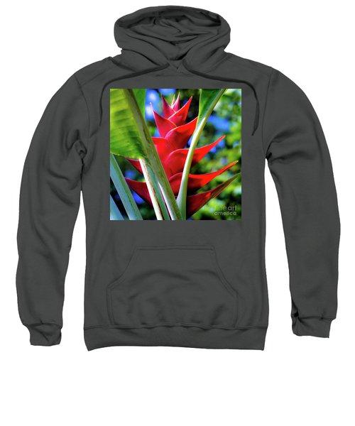 Red Heliconia Hawaii Sweatshirt