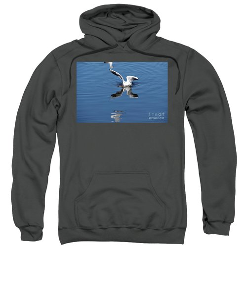 Seagull Fishing Sweatshirt