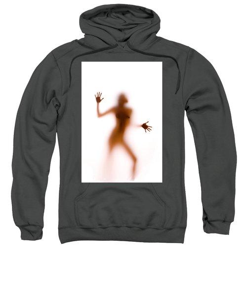 Silhouette 14 Sweatshirt