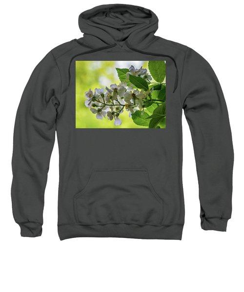 Spring Dream Sweatshirt