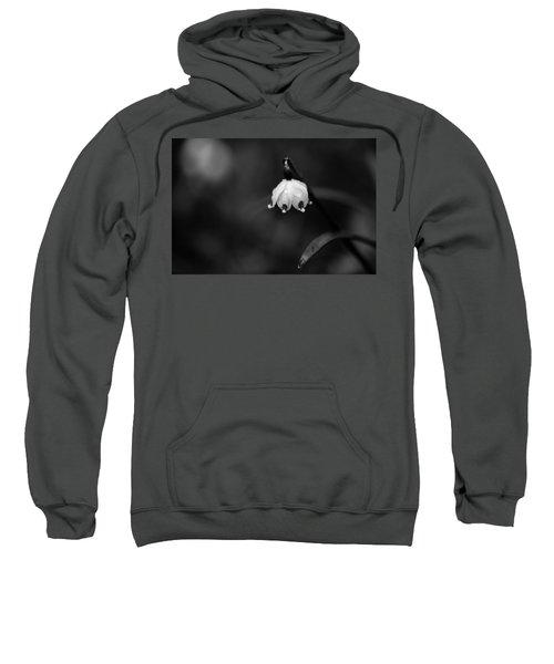 Spring Snowflake Sweatshirt