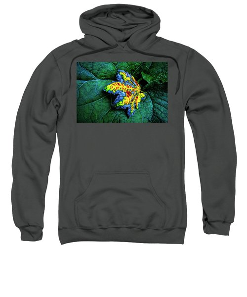 The Leaf Sweatshirt