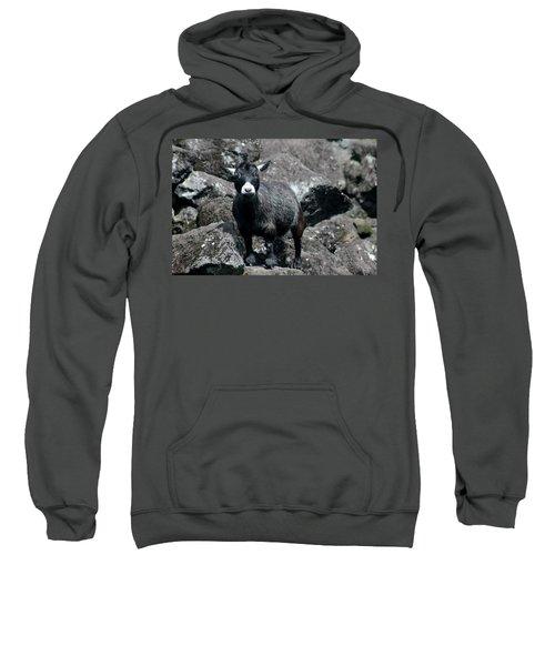 This Is My Rock Sweatshirt