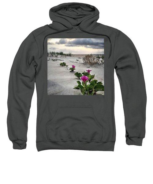 Weekend Glories 6.18.16 Sweatshirt