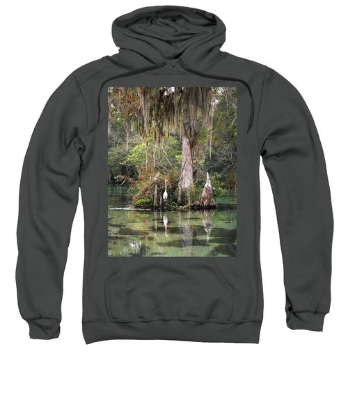 Weeki Wachee River Sweatshirt