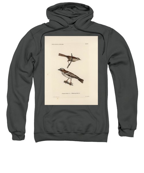 Sweatshirt featuring the drawing White-browed Sparrow-weaver And Grass Or Bush Warbler by J D L Franz Wagner