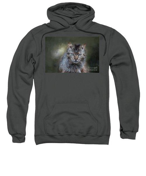 Wild Cat Portrait Sweatshirt