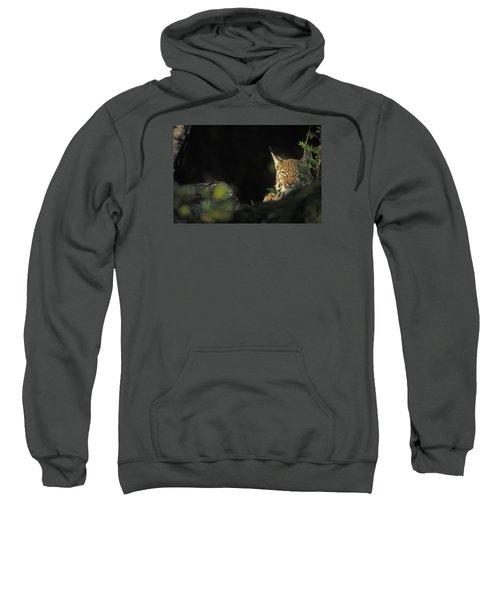 151001p105 Sweatshirt