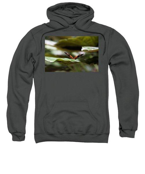 1527 Sweatshirt