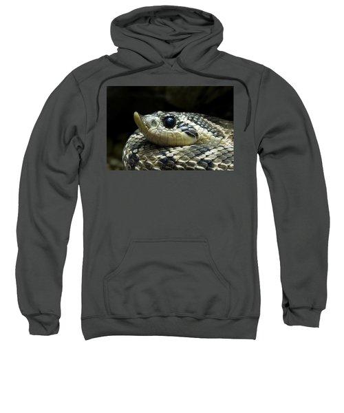 160115p141 Sweatshirt