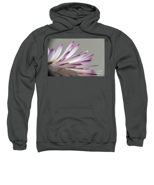 Beautiful Colorful Image About Daisy Flower Sweatshirt