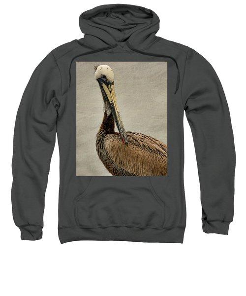Brown Pelican Portrait Sweatshirt