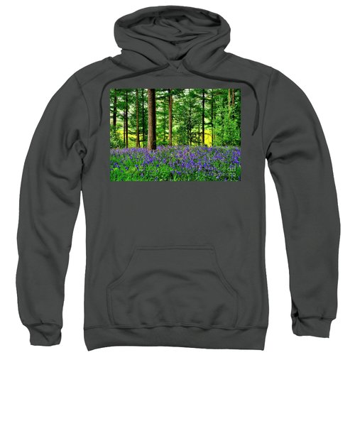 English Bluebell Wood Sweatshirt