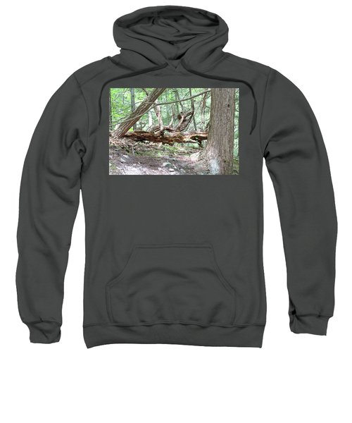 Fallen Tree Sweatshirt