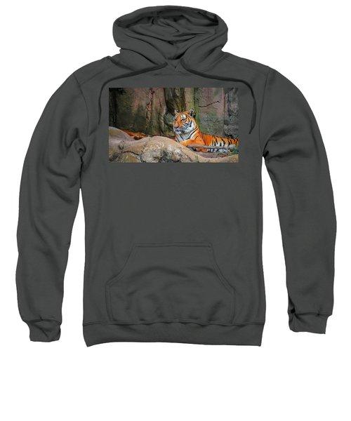Fort Worth Zoo Tiger Sweatshirt