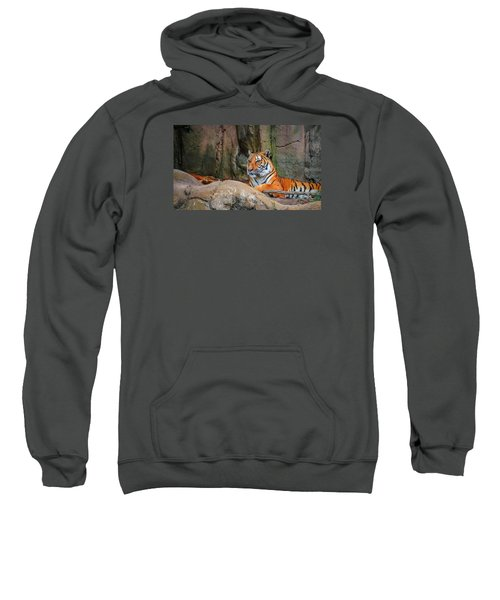 Fort Worth Zoo Tiger Sweatshirt