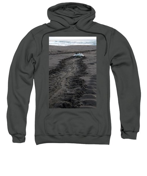 Sweatshirt featuring the photograph Green Sea Turtle Returning To Sea by Breck Bartholomew