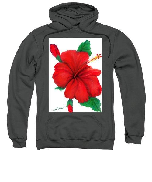Greeting Cards Sweatshirt