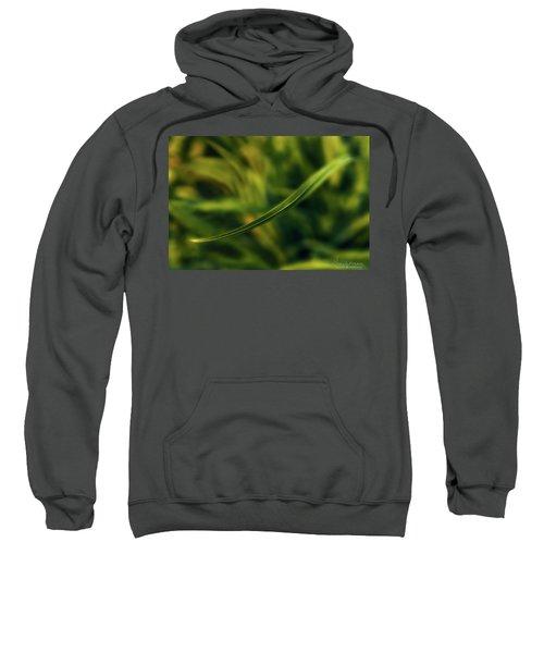 Natures Way Sweatshirt