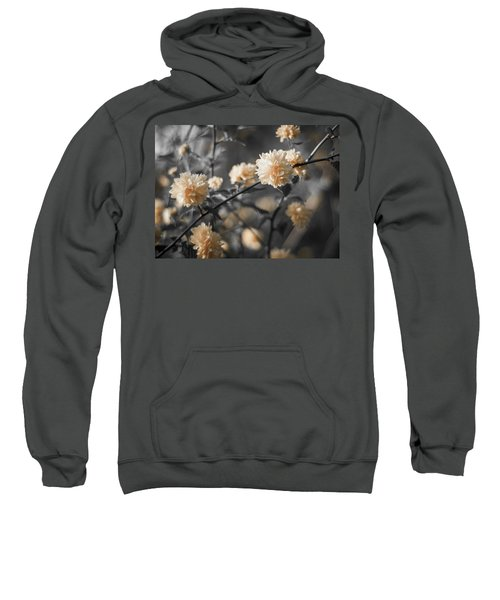 Spring Is In The Air Sweatshirt